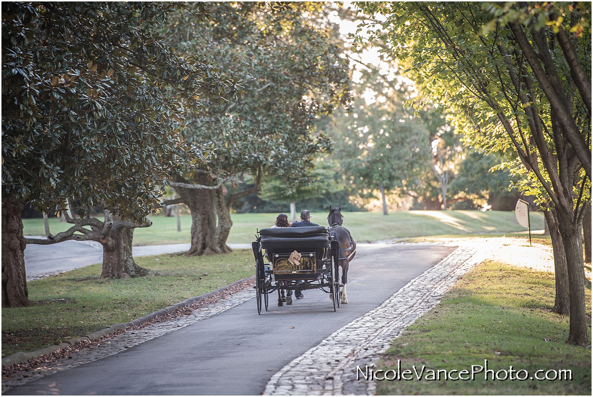 The newlyweds enjoy a carriage ride around the park together directly after their wedding at Maymont Park.